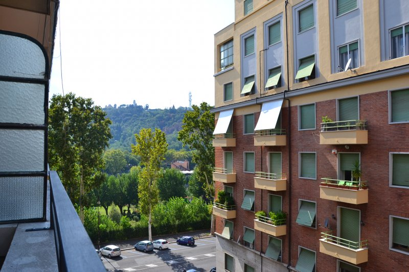 Roma  Lungotevere Flaminio - Foto 2