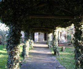 Villa Bassano Romano - Viterbo - Affare