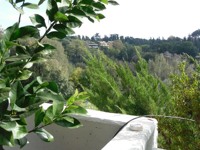 Roma Cortina D'ampezzo adiacente Via della Mendola - Foto 4