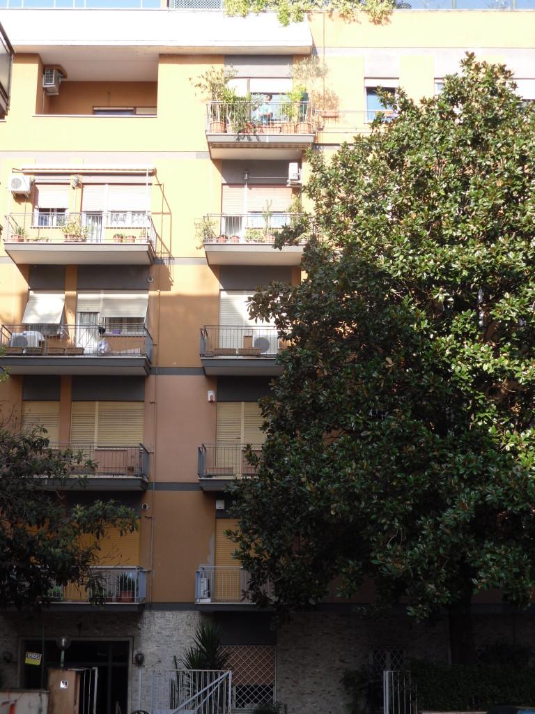 Vigna Clara via Francesco Ferrara - Foto 2