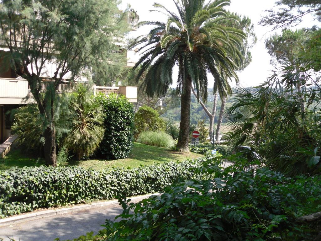 Cassia San Godenzo 220 mq con giardino - Foto 3