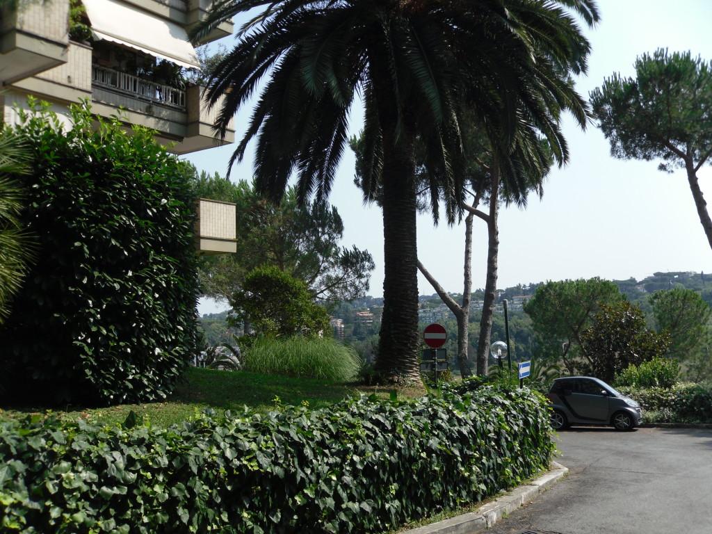 Cassia San Godenzo 220 mq con giardino - Foto 2