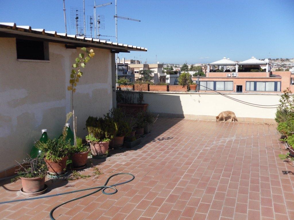 Roma Balduina Proba Petronia attico panoramicissimo - Foto 8