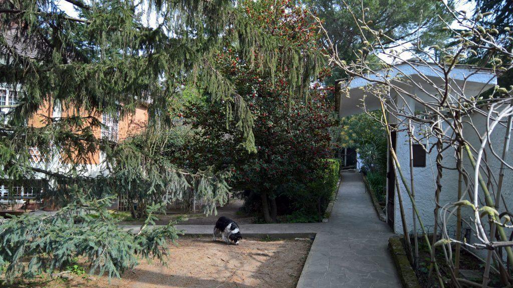 Splendida Villa Unifamiliare a Formello con Parco Annesso - Foto 11