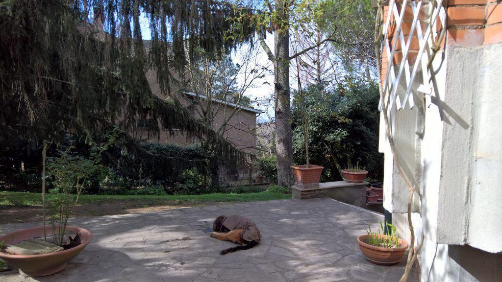Splendida Villa Unifamiliare a Formello con Parco Annesso - Foto 6
